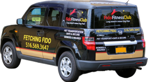 Pet pickup and drop off with Fetching Fido