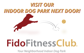 Fido Fitness Club - Indoor Dog Park & Doggy Daycare