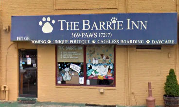 The Barrie Inn Dog Grooming Services